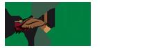 logo Sokoliari Aquila